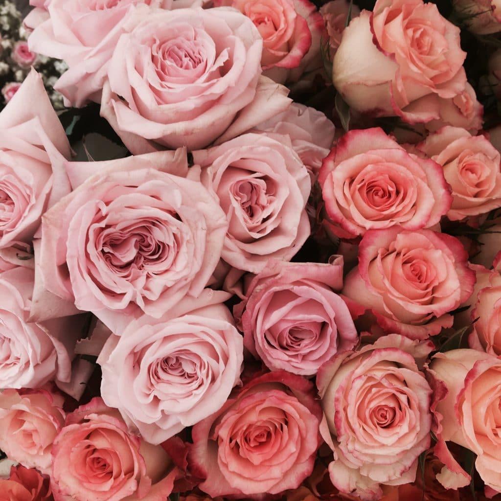 Róze idealne kiaty na ślub i wesele